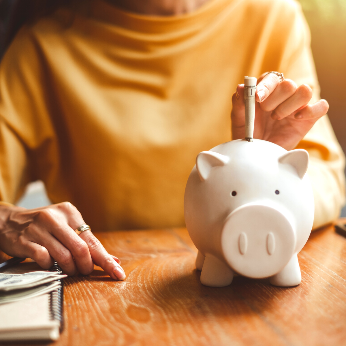 picture-of-person-using-piggy-bank